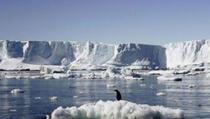 Članovima ekspedicije na Antarktiku smanjio se mozak nakon 14 mjeseci
