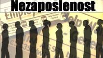 Stopa nezaposlenosti na Kosovu 24,6 odsto