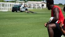 Aligator upao na trening MLS tima i izazvao oduševljenje među igračima