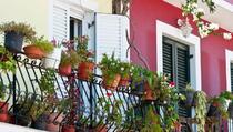 Pet najčešćih grešaka koje radimo s balkonskim cvijećem: Evo rješenja...