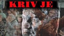 Balkanski krvnik Ratko Mladić osuđen na doživotnu robiju