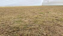 Ovako izgleda travnjak na kojem će Crnogorci početi kvalifikacije za SP