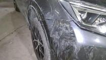 Problem pasa lutalica u Prištini: Napadaju i parkirane automobile