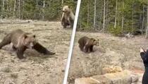 Žena osuđena na zatvor jer se previše približila medvjedu i slikala ga