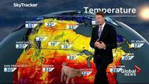 Psić ušetao u kadar za vrijeme emitiranja vremenske prognoze