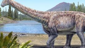 Gotovo polovina Amerikanaca misli da dinosaurusi još uvijek postoje