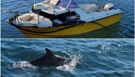 Bizarna nesreća zaprepastila mještane: Na mladića pao kit