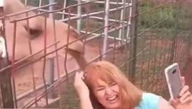 Htjela da napravi selfie pa joj kamila iščupala pramen kose