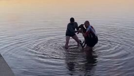 Spasili kengura iz jezera, pogledajte njegovu reakciju koja je sve oduševila