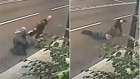 Pogledajte kako se žena obračunala sa lopovom koji je pokušao da joj otme torbu