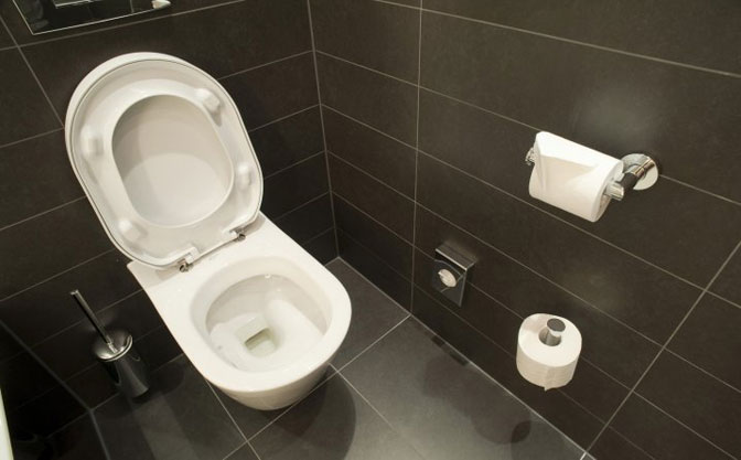 Rezultat slika za toalet na Wc školjku